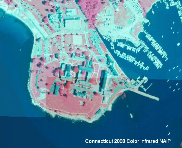 Example of 2008 NAIP Color Infrared Orthophotography