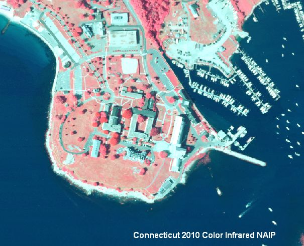 Example of 2010 NAIP Color Infrared Orthophotography